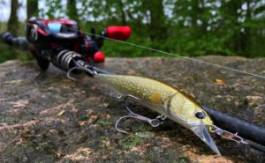 erkbait 120SP Pike limited